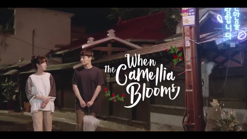 Download When the Camellia Blooms (2019) Complete 동백꽃 필 무렵 All Episodes 1-40 [With English Subtitles] [480p & 720p HD] Watch Online Free On PikaHD.com